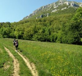 Hiking Checklist - One Day Hike in Warm Weather