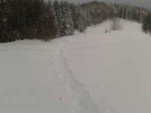 What to do if you get lost on a hike - path in the snow is a good sign!