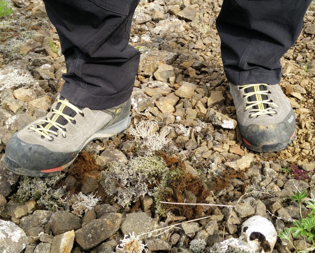f5be353f8c9 Salewa Mountain Trainer – First Hand Review - Best Hiking