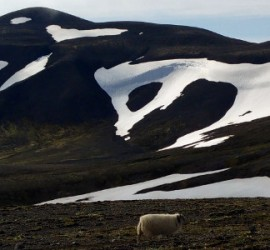 10 things you should know before going hiking in iceland - Kjolur trail in July