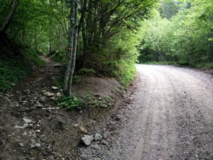 Begunjscica Trail - The trail splits from the wide dirt track