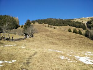 Grubereck Trail - Grassy Slope