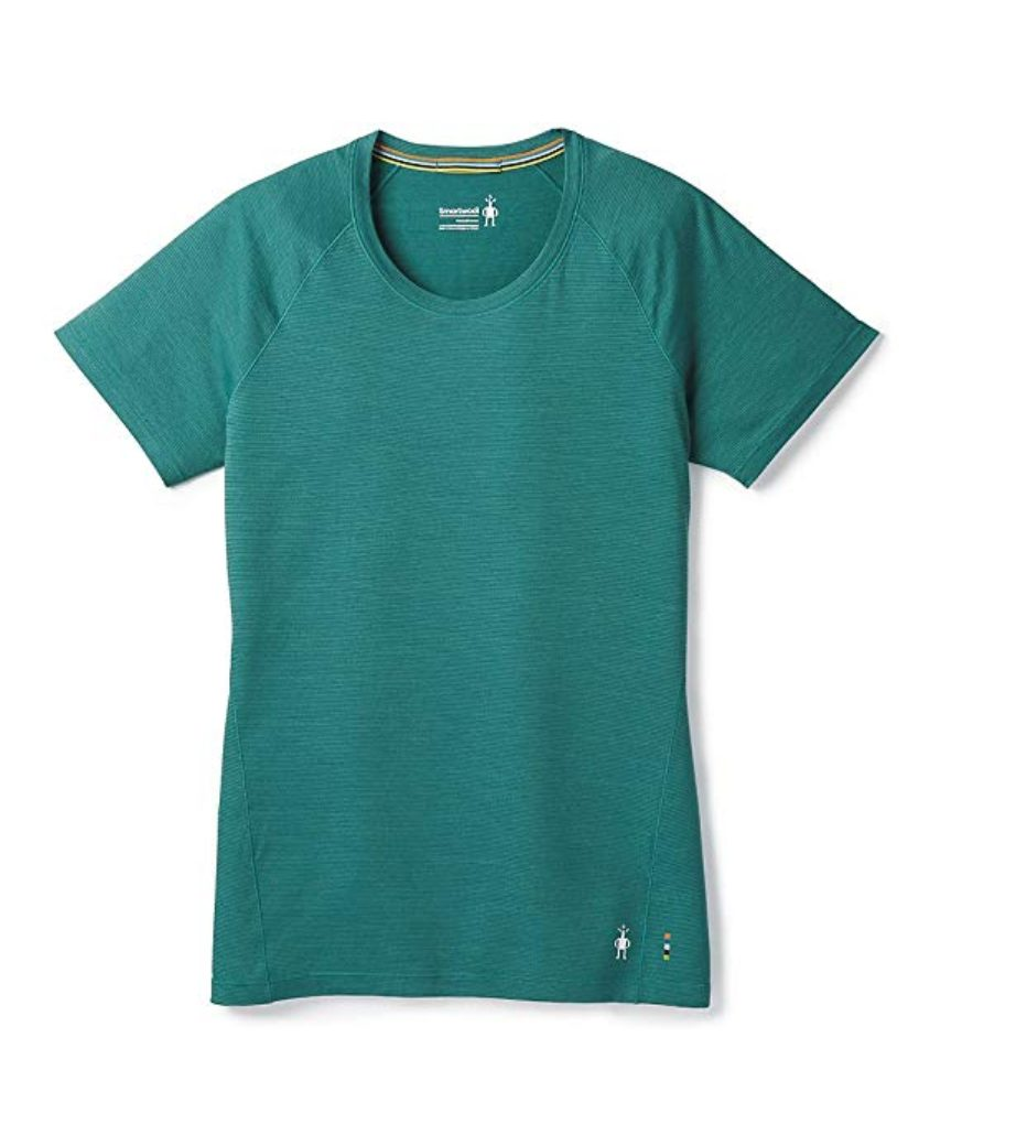 75b860d2df84 Cast your vote to see the results of this poll! SmartWool Merino 150 T-shirt