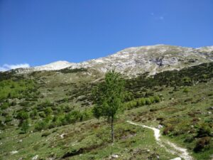 Vrh nad Skrbino Trail - From the hut onwards