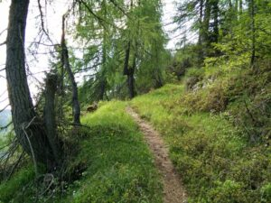 Hiking for Beginners - Find the right trail