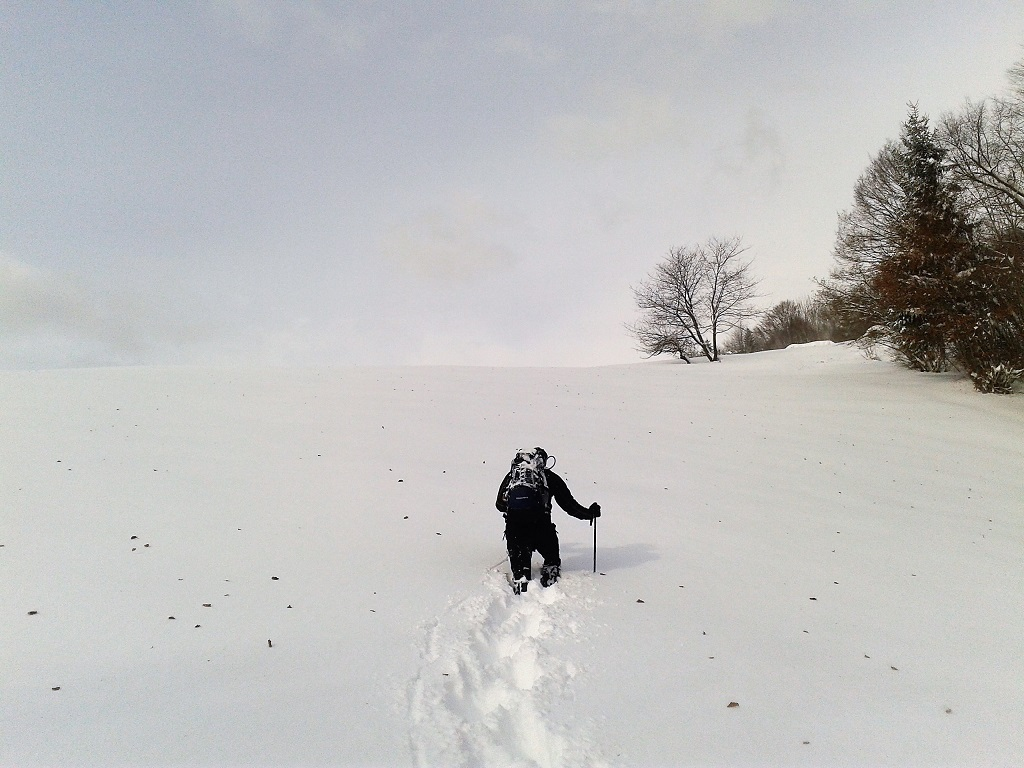 Winter Hiking: 7 Essential Tips