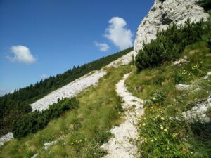 Vrtaca Trail - Towards the mountain hut