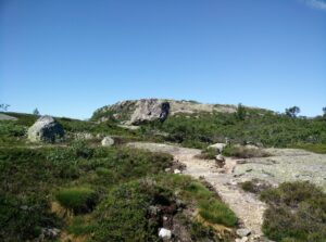 Reinstjønn Hiking Trail in Bortelid, Norway - one of the huge rocks providing shade on the plateau