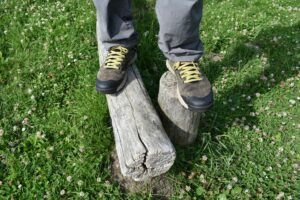 Danner Trail 2650 GTX Shoes: The shoes look stylish