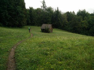 Lake Bled Osojnica hike - meadow after steep climb down
